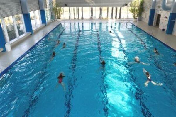 Bild:Schwimmerinnen im Sportbecken